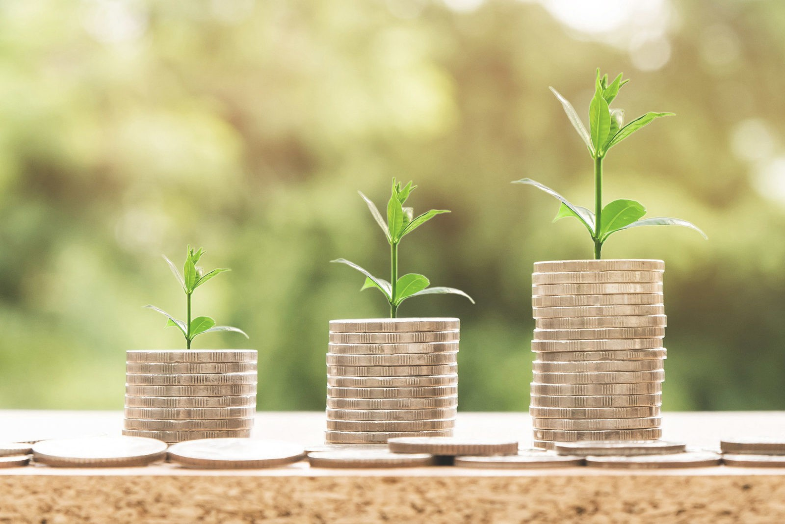 Finanzen und Finanzielle Freiheit bei Diamond Management
